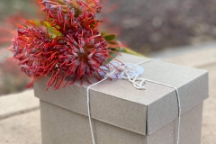 adelaide botanical gift box