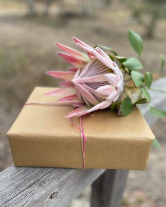adelaide gift boxes flowers
